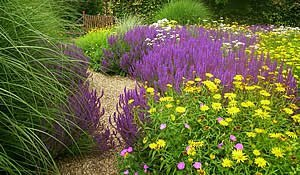 How Your Garden Can Increase Your House Value